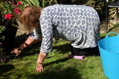 Elizabeth cutting grass