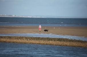 Dog walker on sandbank