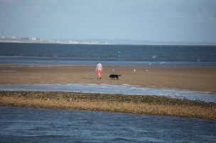 Dog walker on sandbank