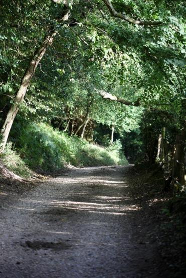 Castle Hill Lane
