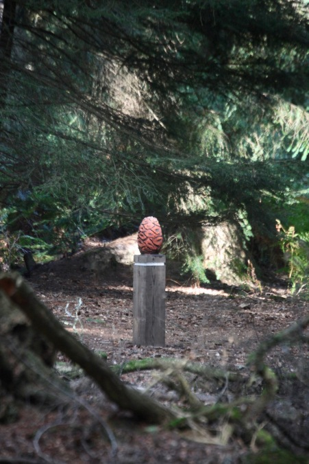 Forest scene with pine cone marker