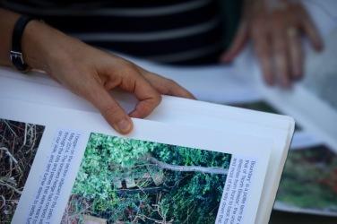 Jo and Pauline's hands, Gardening Albums