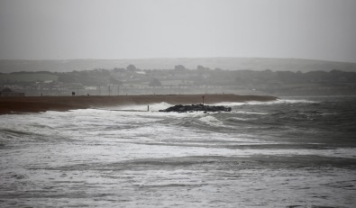 Seascape, walkers and dog