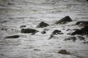 Sea on rocks