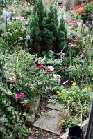 Beside greenhouse
