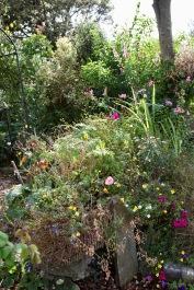 Sink planters