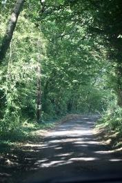 Snooks Lane