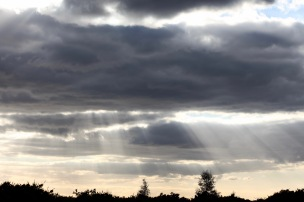 Cloudscape with Jesus beams