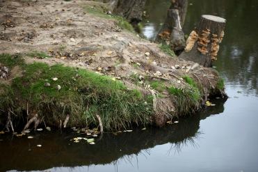 Highland Water bank