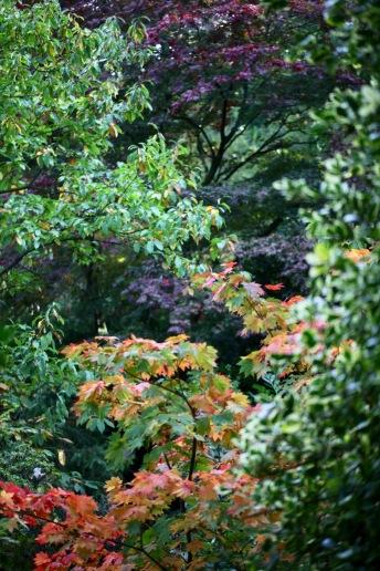 Leaf palette