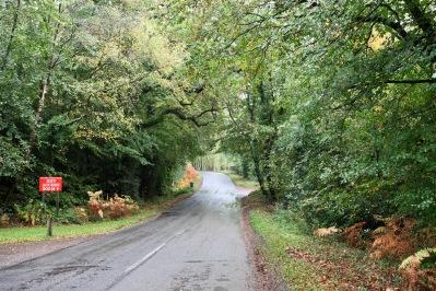 Deerleap Lane