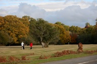 Golfers and pony in landscape